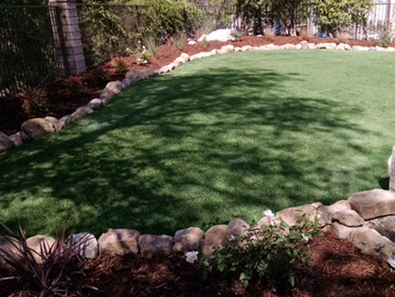 Synthetic grass backyard