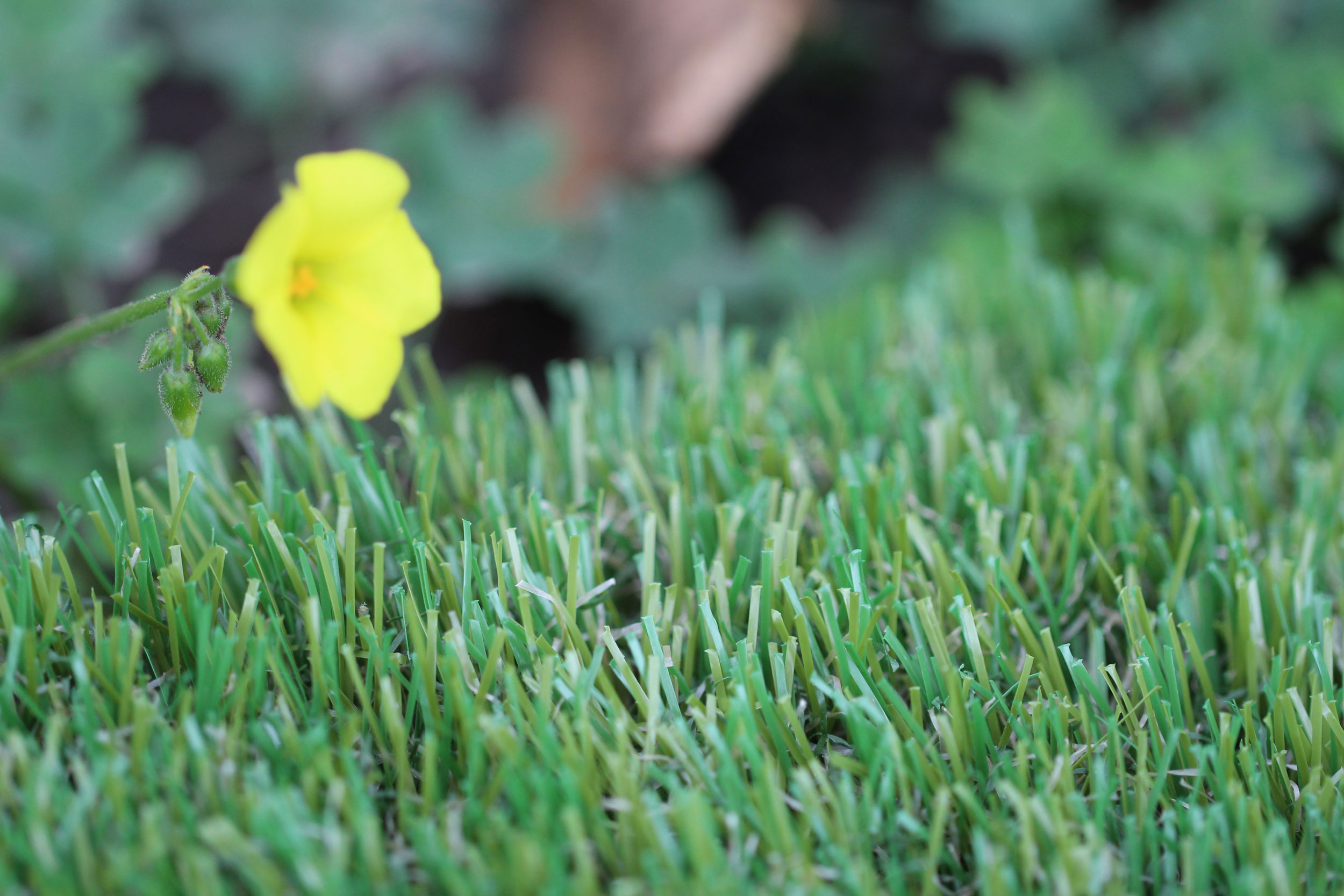 Olive-60 Artificial Grass For Yards