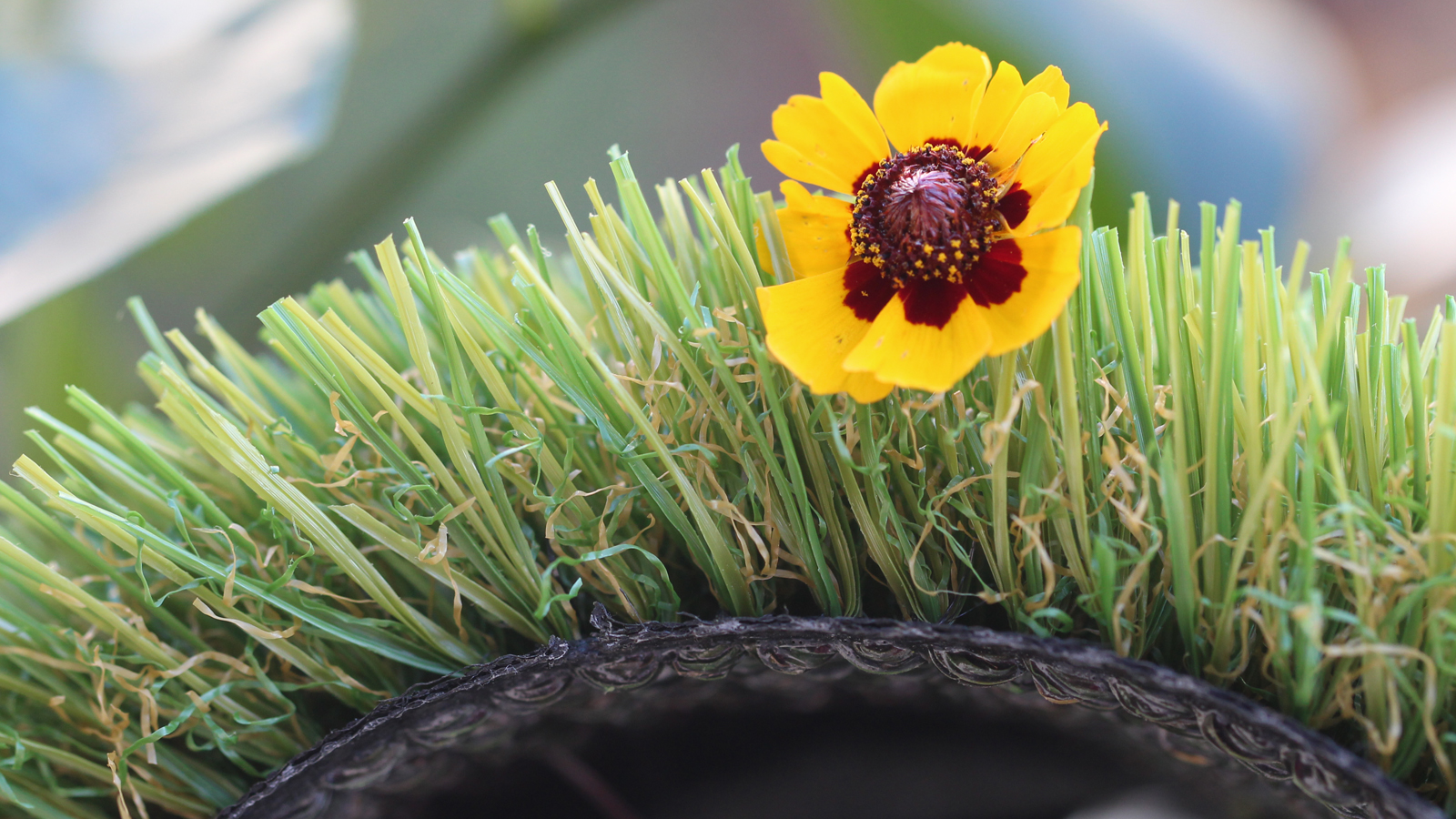 artificial grass olive green emerald green with yellow red flower