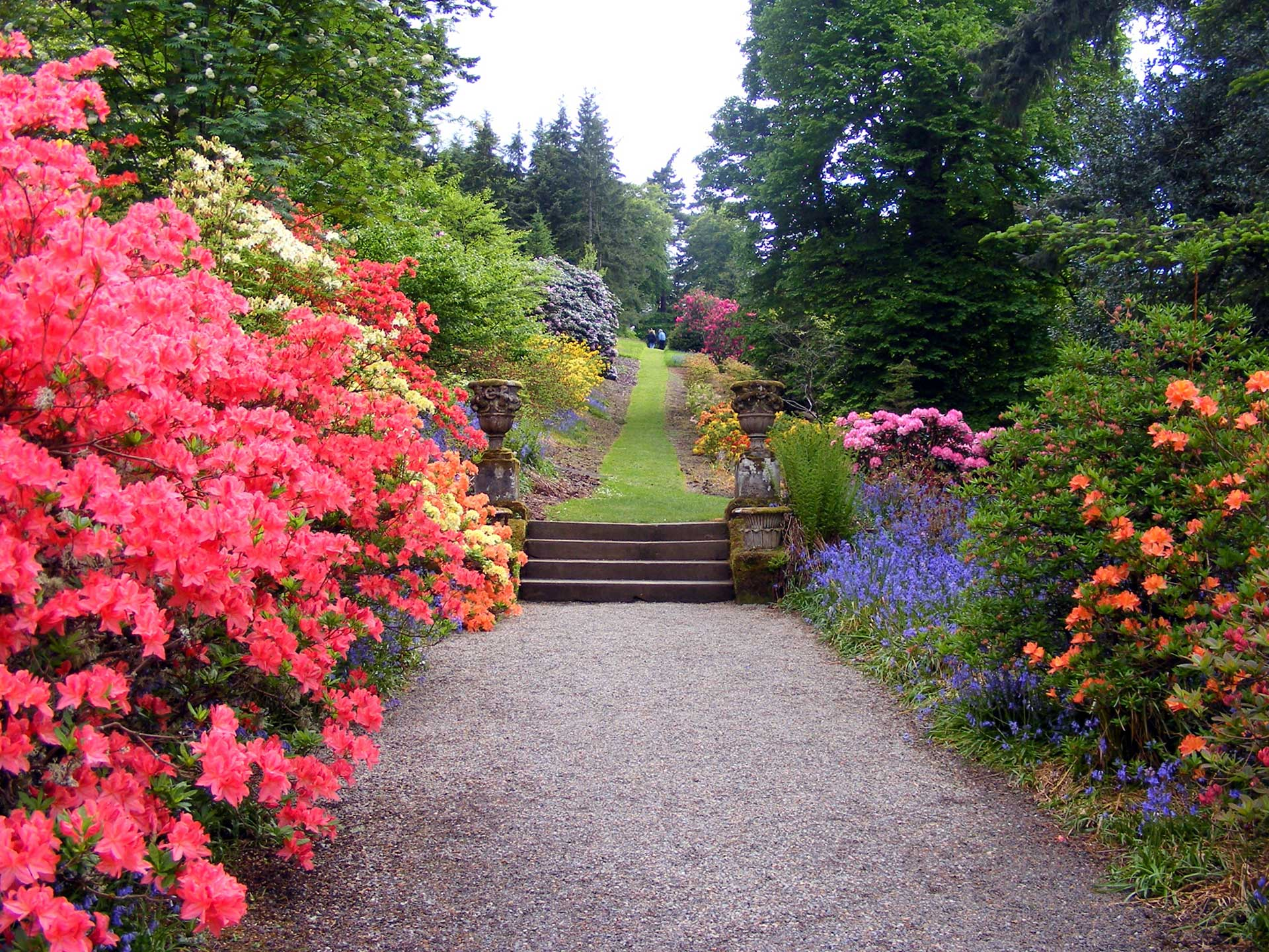 Colors red yellow pink pathway landscape design