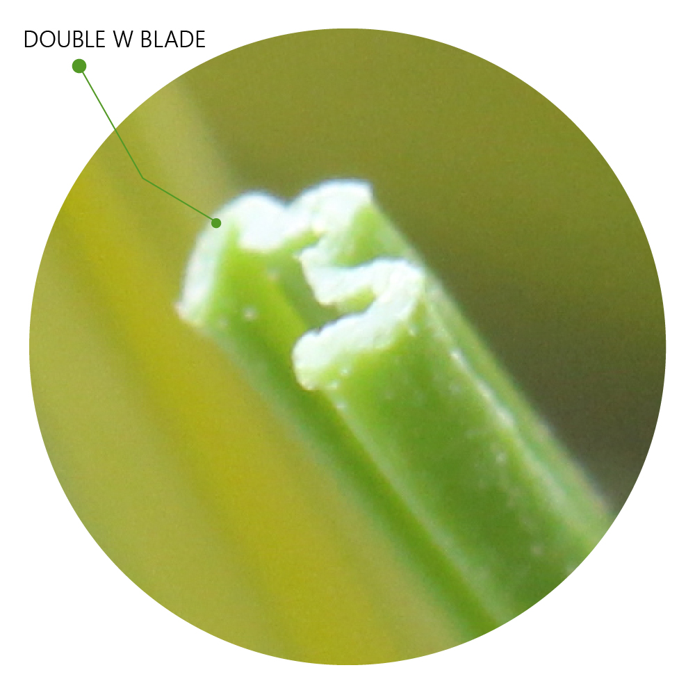 Double W Blade: Artificial Grass Synthetic Turf Technology Blade Designs