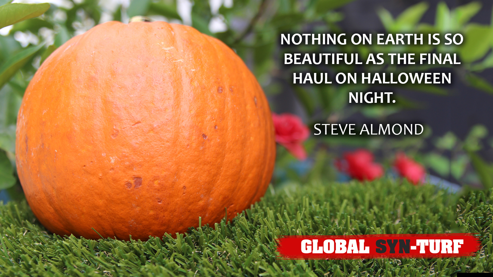Halloween pumpkin on artificial grass red flowers quote steve almond