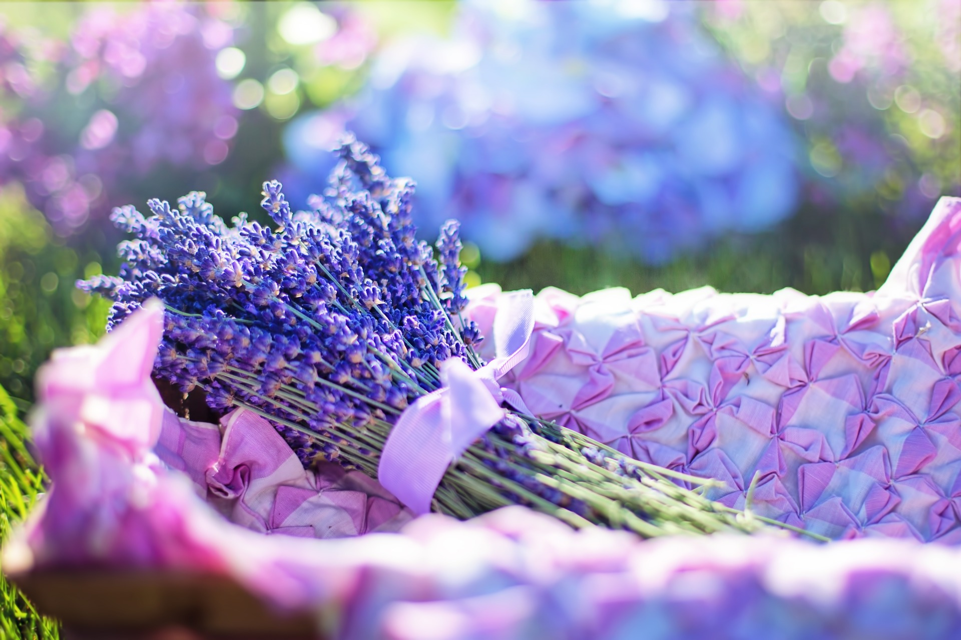 Lavender Flowers in the basket