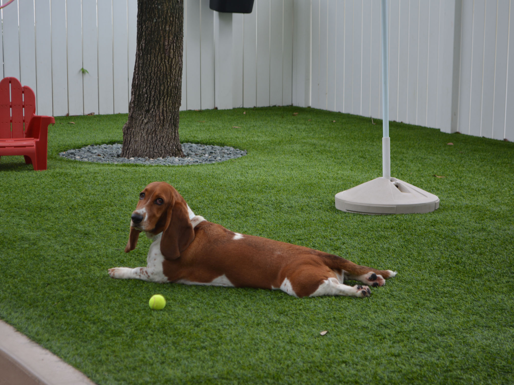Dog Pound Artificial Grass for Dogs North Highlands, California