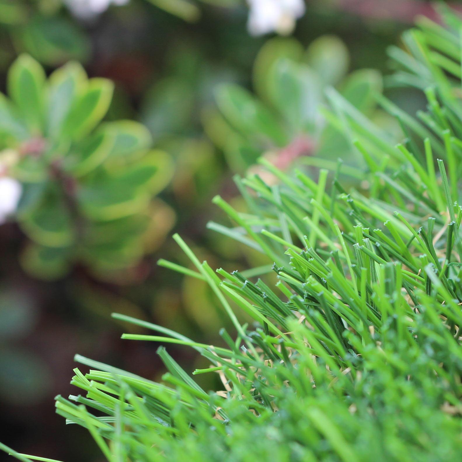 Riviera Monterey 50 oz artificial grass, natural landscape background