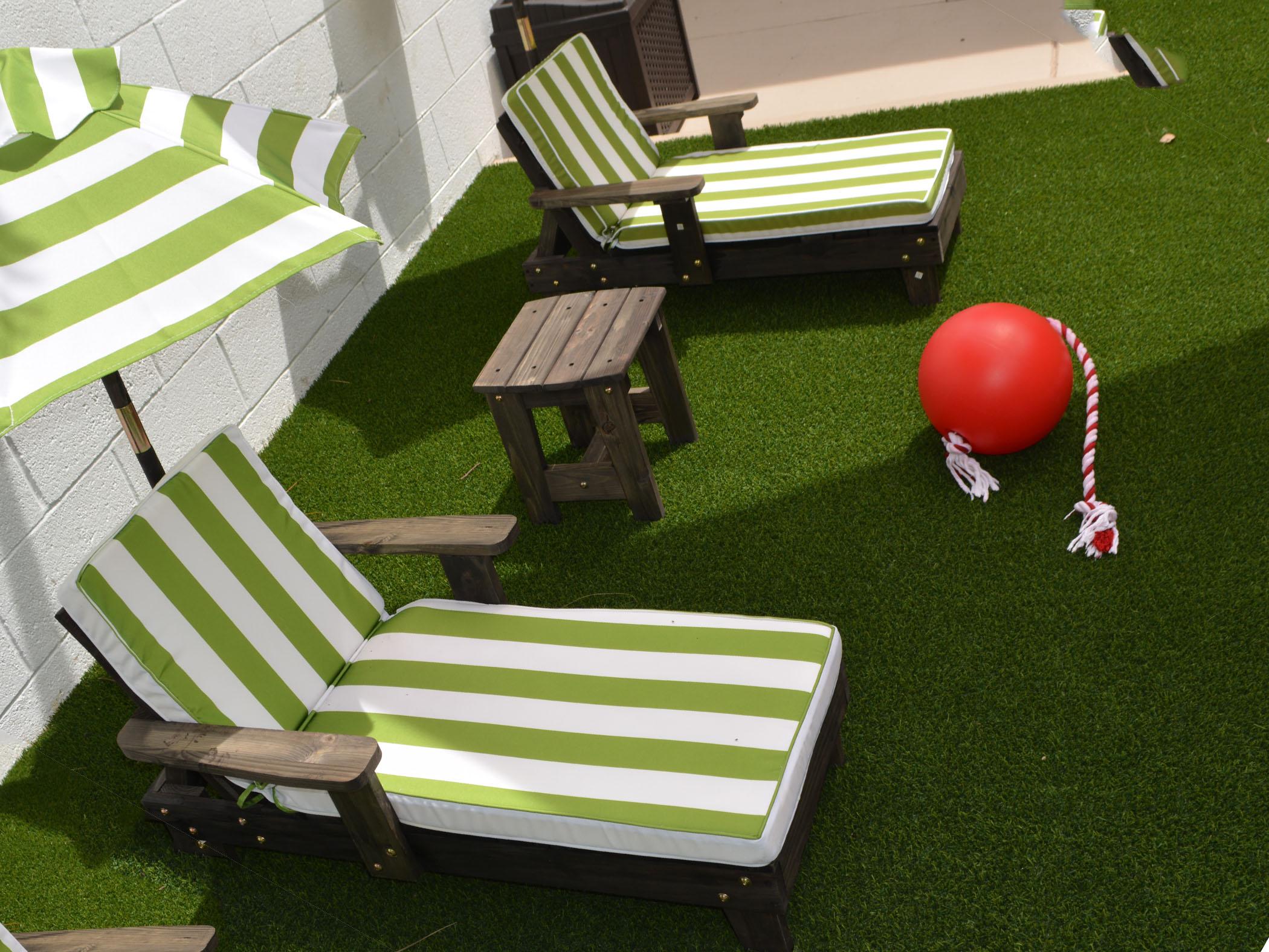 Backyard Designs with Synthetic Turf Sherman Oaks, California