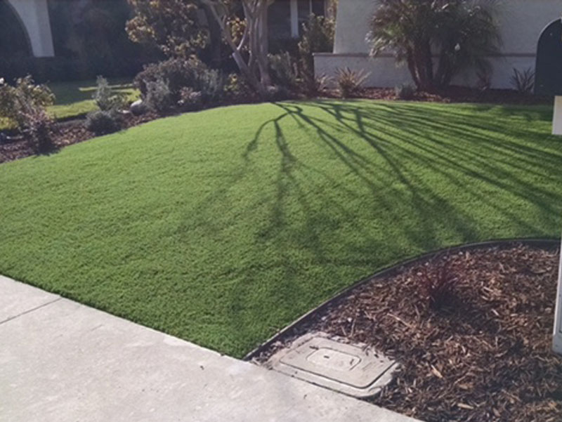 Front yard landscape picture, artificial grass installation, driveway, sidewalk, brown mulch, synthetic grass