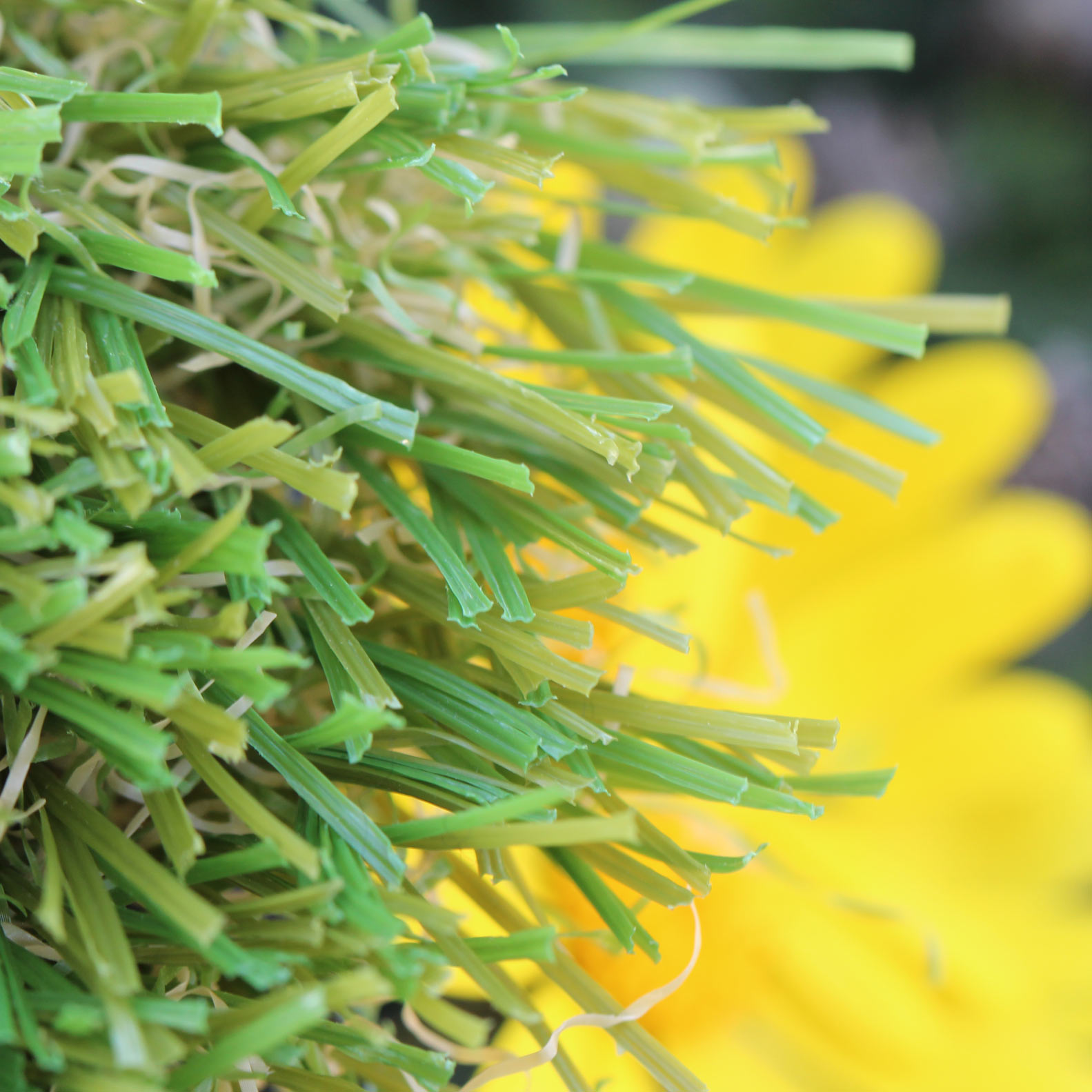W Shape Blade 60 oz. artificial grass