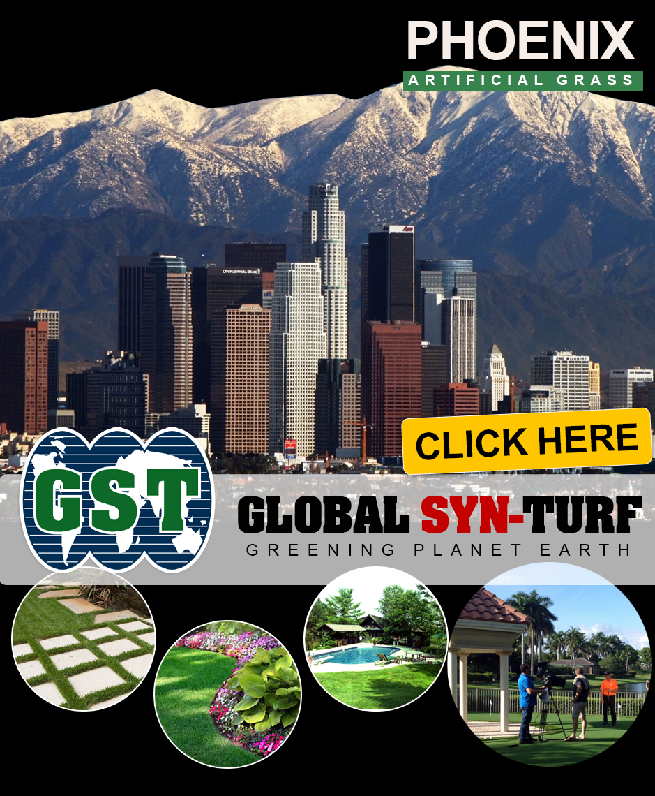 Artificial grass, synthetic turf in Phoenix, Arizona