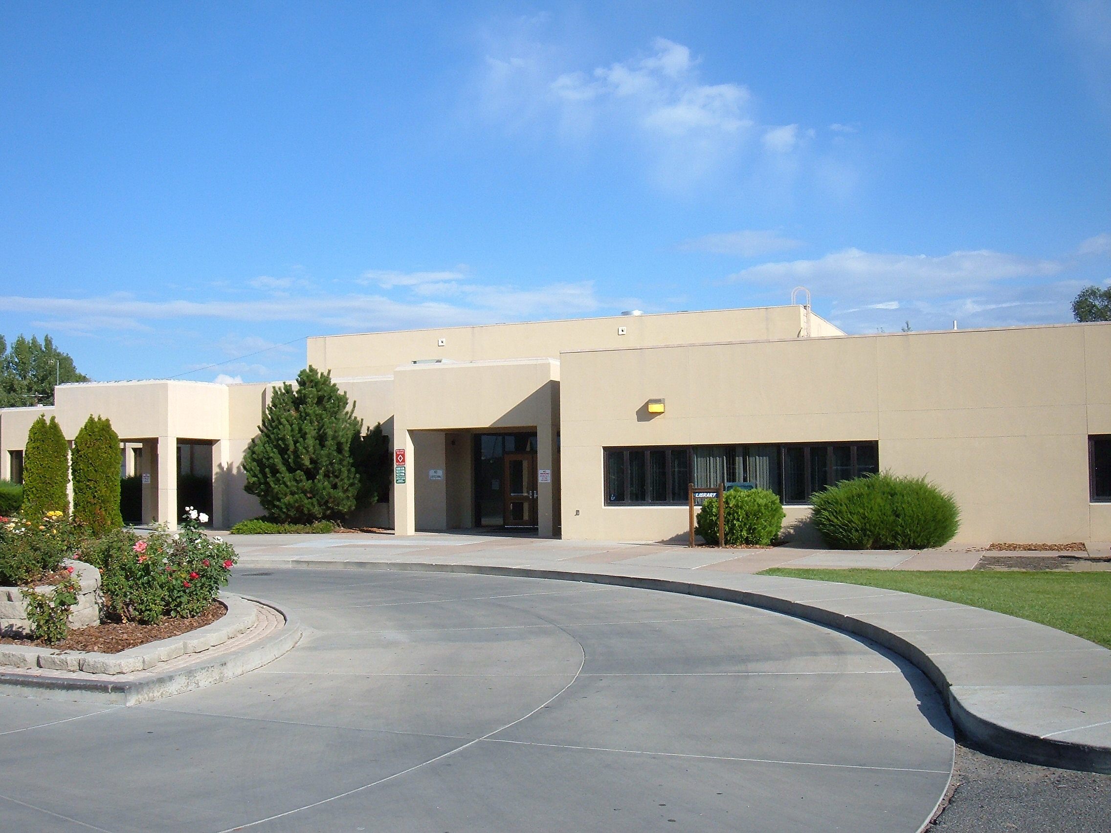 Artificial grass, synthetic turf in Bloomfield, New Mexico