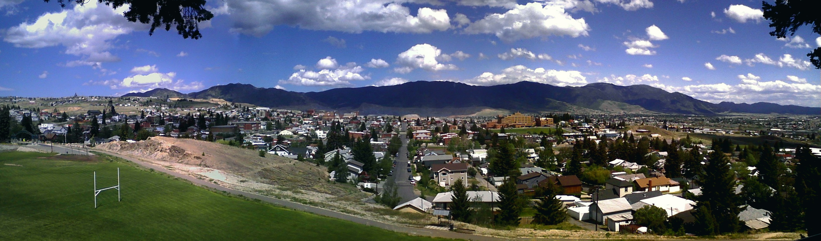 Artificial grass, synthetic turf in Butte, Montana
