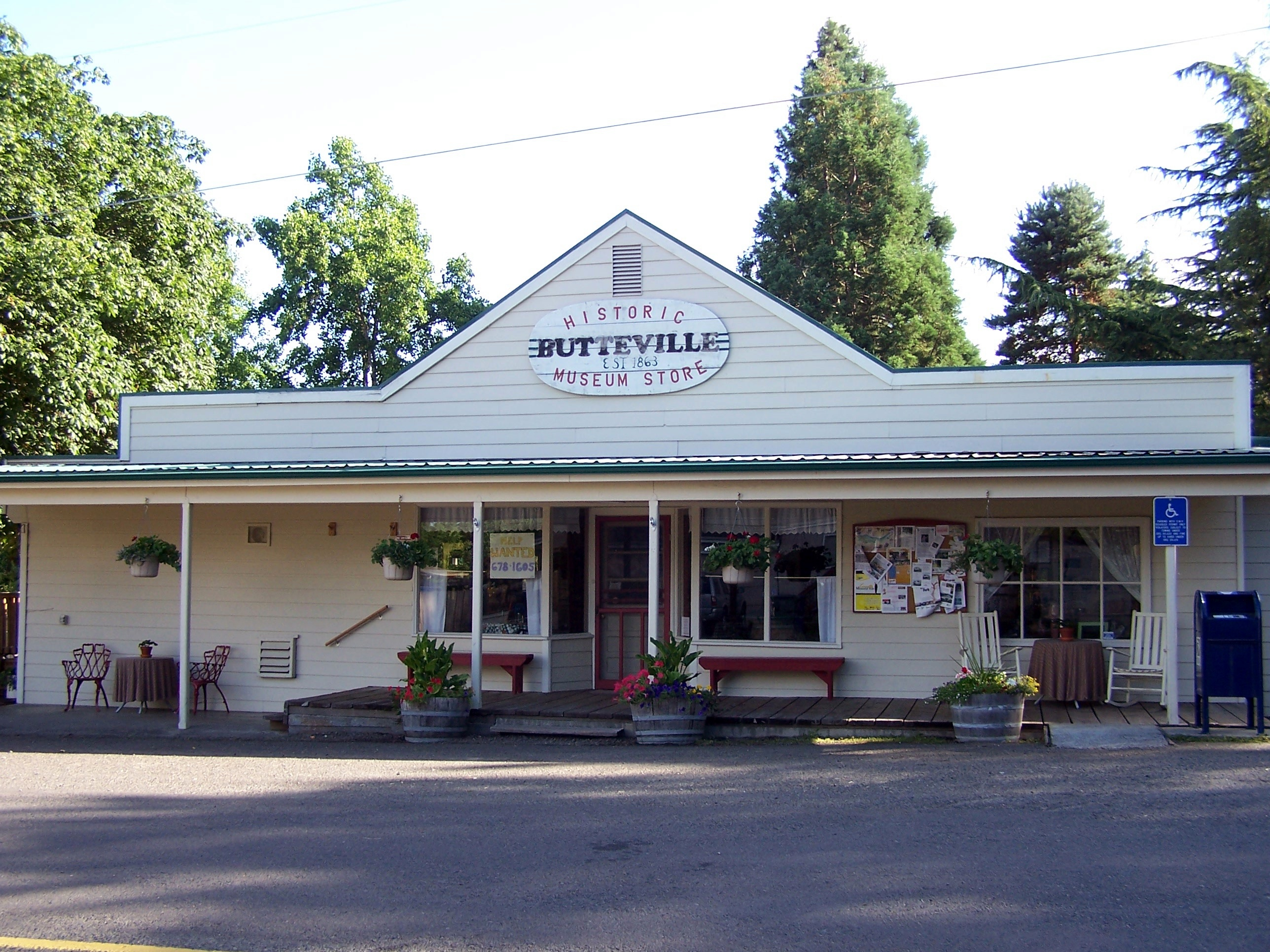 Artificial grass, synthetic turf in Butteville, Oregon