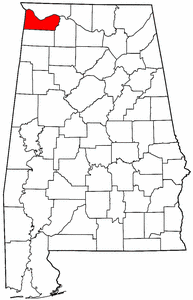 Artificial grass, synthetic turf in Colbert County, Alabama