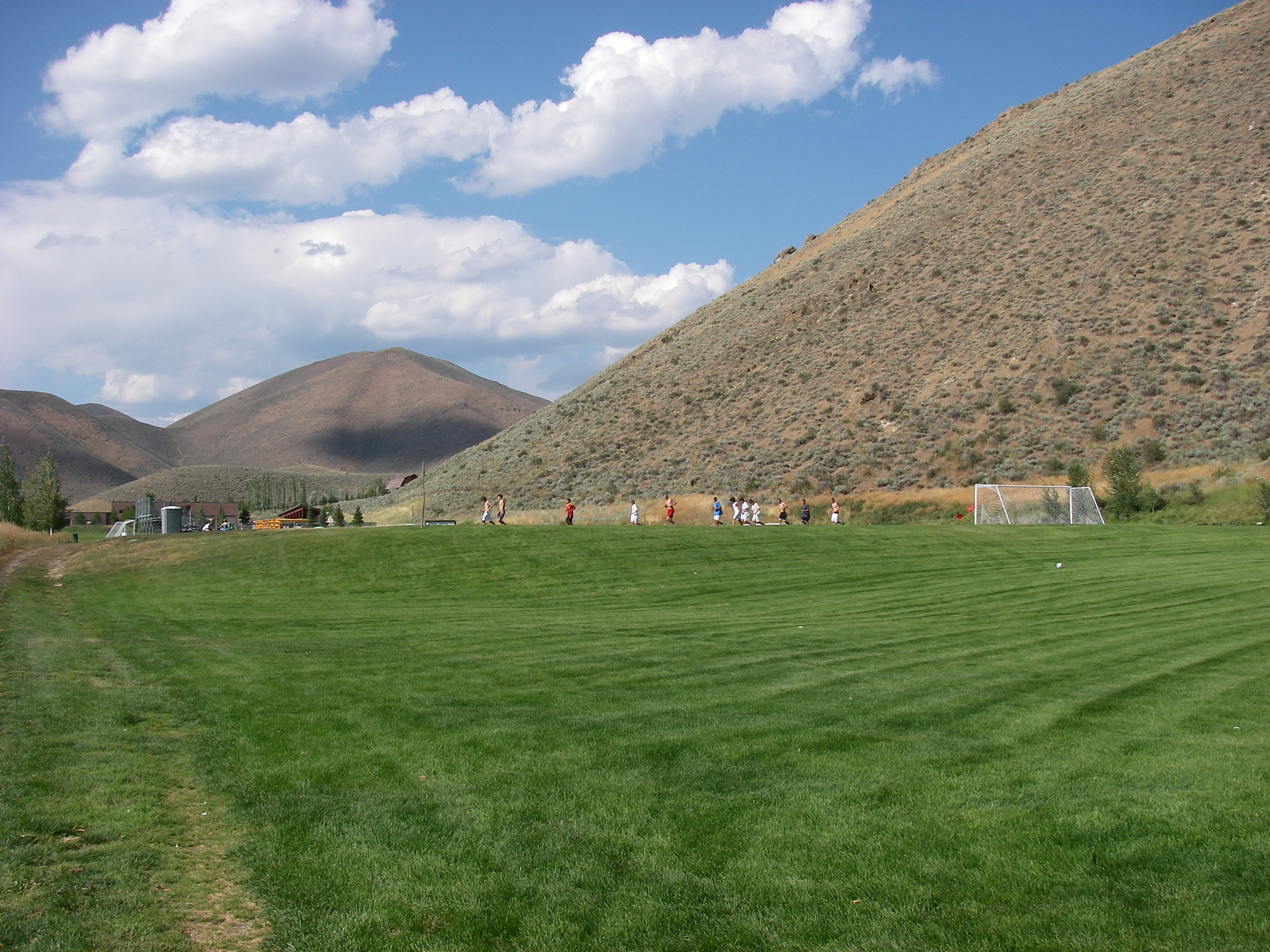 Artificial grass, synthetic turf in Hailey, Idaho