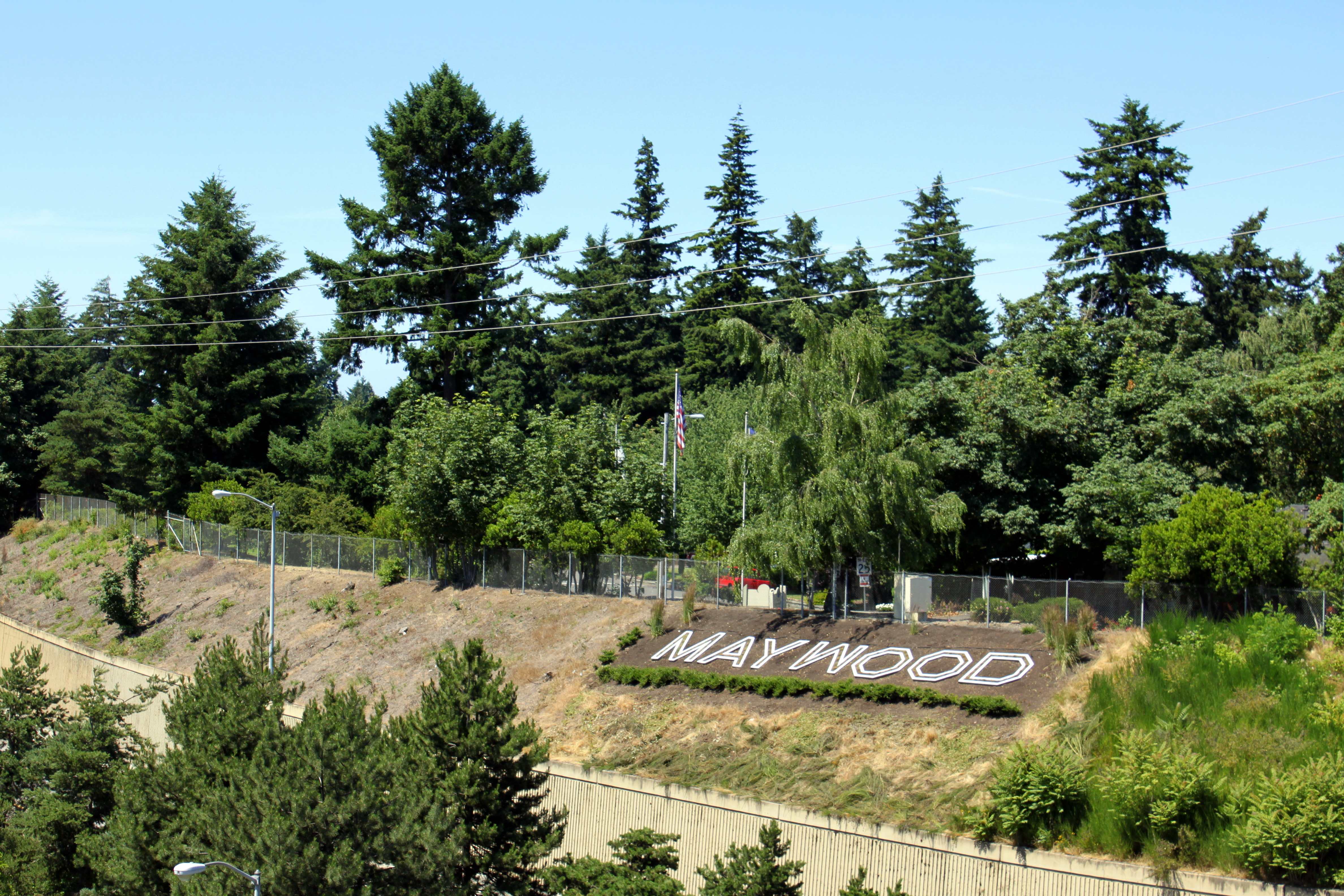 Artificial grass, synthetic turf in Maywood Park, Oregon