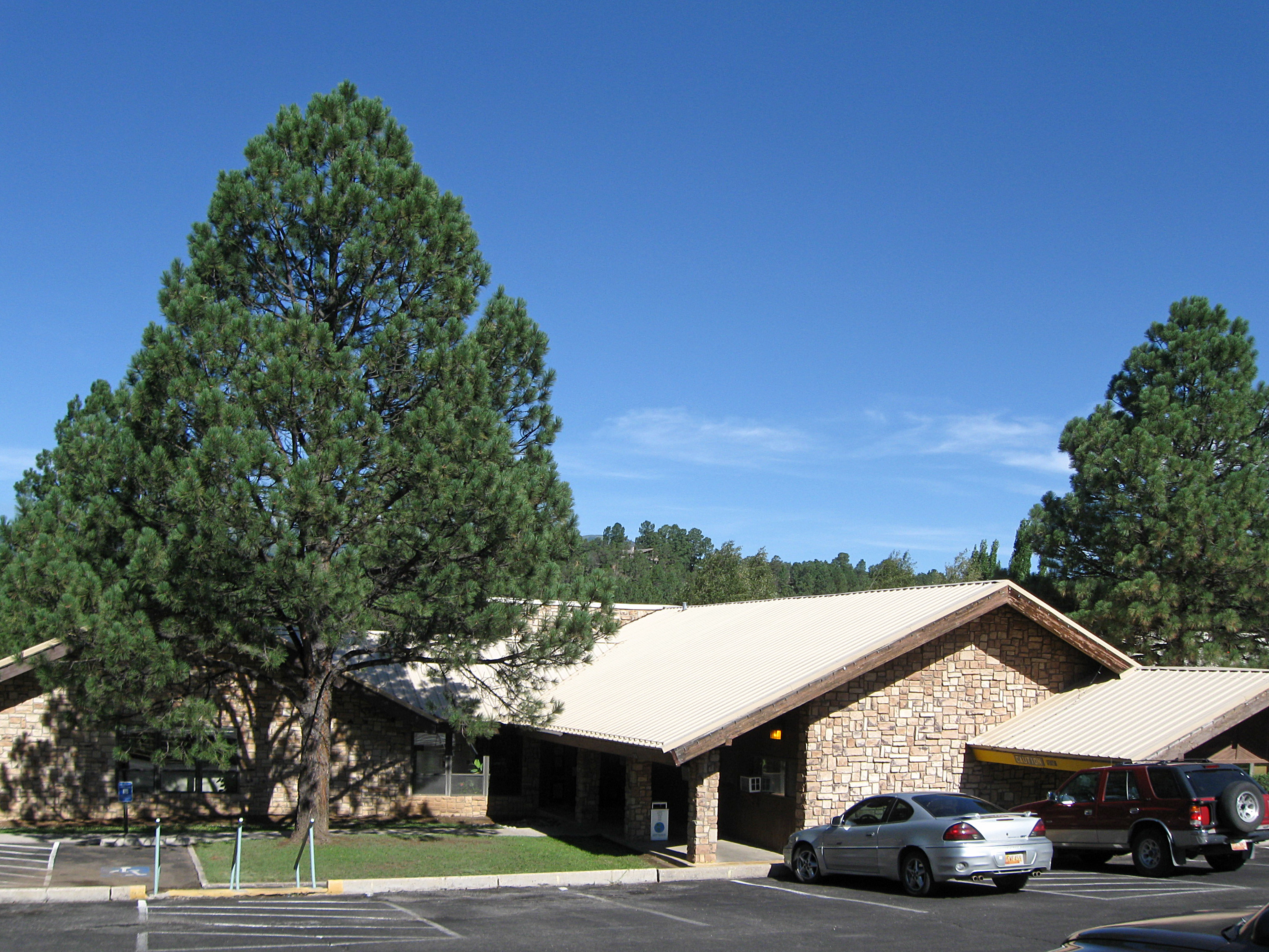 Artificial grass, synthetic turf in Ruidoso, New Mexico