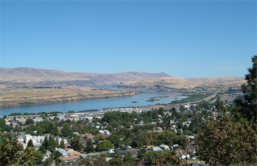 Artificial grass, synthetic turf in The Dalles, Oregon