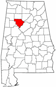 Artificial grass, synthetic turf in Walker County, Alabama