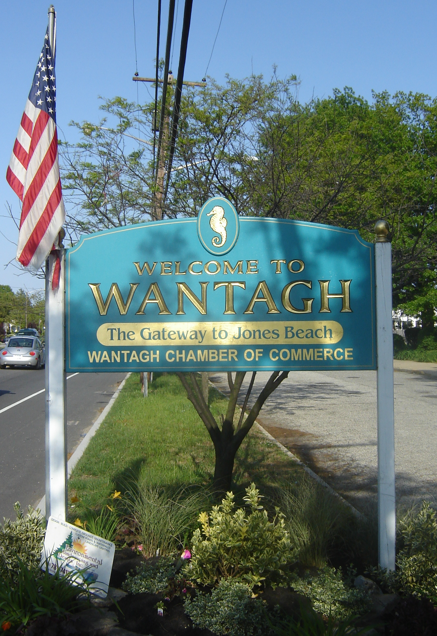 Artificial grass, synthetic turf in Wantagh, New York