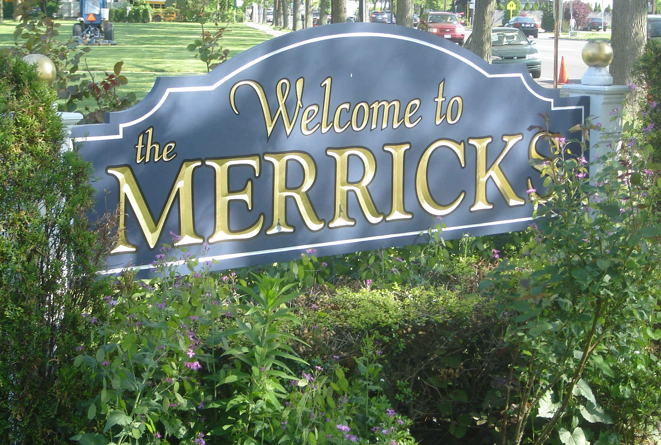 Artificial grass, synthetic turf in Merrick, New York