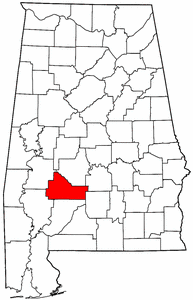 Synthetic Grass Wilcox County