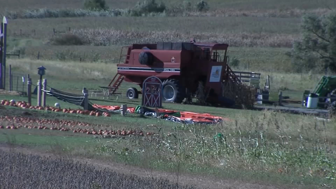 Toddler dies after strong wind sends bounce pad flying at pumpkin patch