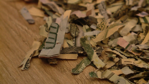 Toddler Puts $1,060 In Cash Through Shredder