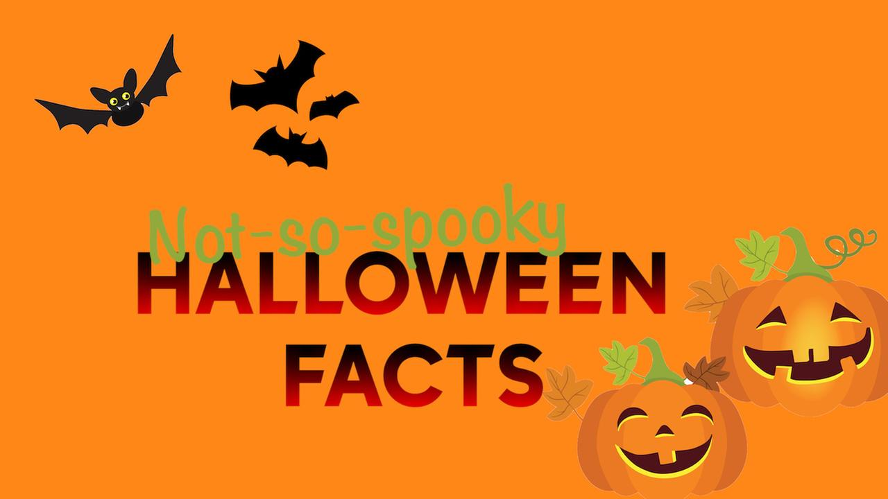 What is Halloween? Check out these not-so-spooky facts about the holiday