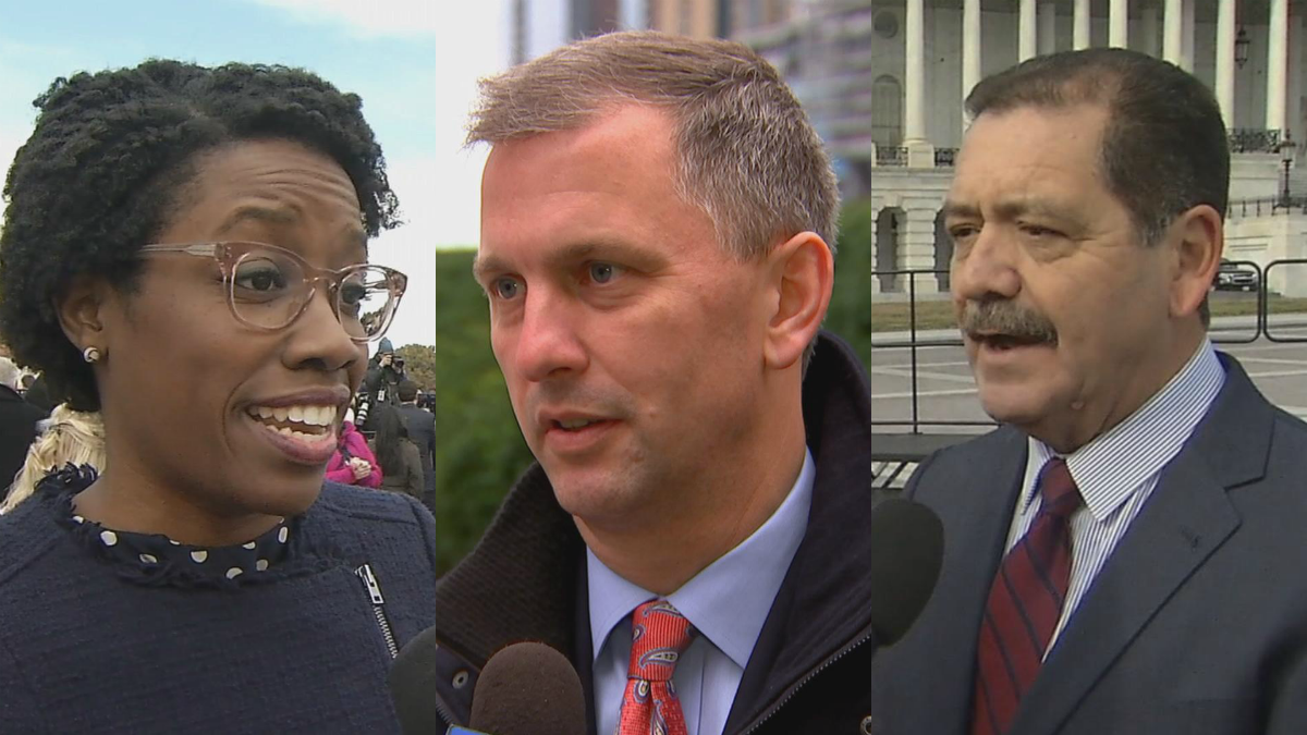 Illinois New Democratic Members of Congress Learn the Ropes