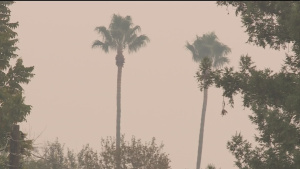 Full List: Smoky Air Prompts Several Colleges And Districts To Close