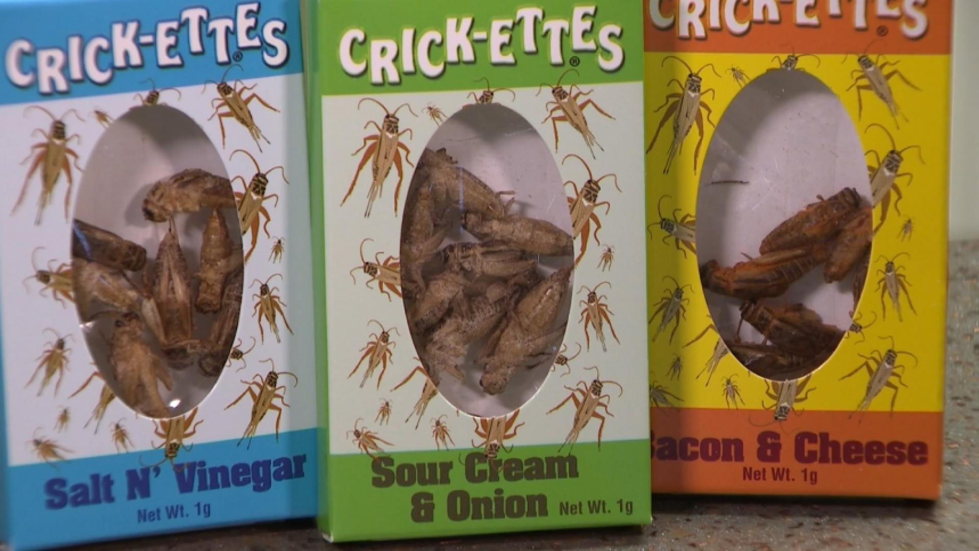 Crickets: Food Of The Future?